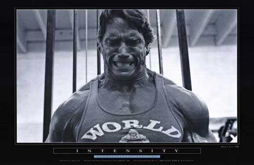 ARNOLD SCHWARZENEGGER Movie POSTER 11x17 C Arnold ...
